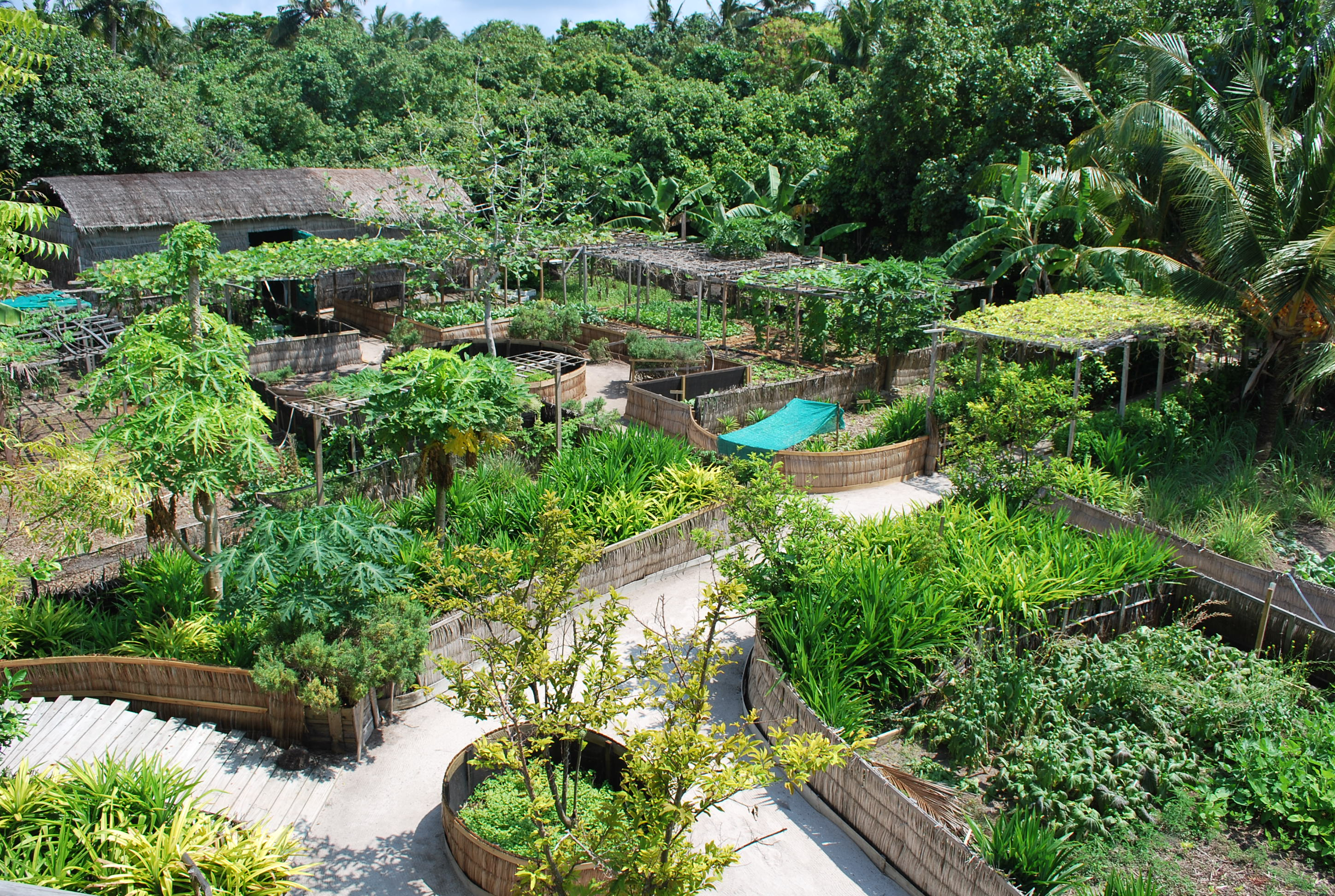 Index of charbinat wp content uploads 2014 03 for Permaculture garden designs
